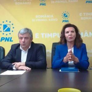 """Ana Stan: """"Câştigul nu va fi al celui care va câştiga competiţia internă, ci al PNL-ului!"""""""